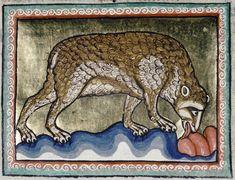 Medieval Bestiary : Bear Gallery