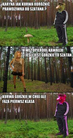 Polish Memes, Funny Memes, Jokes, Cursed Images, Fnaf, Fun Facts, Lego, Humor, Random