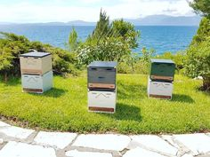 Beautiful beehive boxes for your #homedecor  Visit link in bio for more details!  #homeinahome #home #handcraft #handmade #etsy #etsyshop #beehive #wood #storage #toybox #woodbox #tray #stool #honey#storagebox #interiordecor #new #nature #beeshome #decoration #minimalism #allinone #minimal #interiordesign #exterior #furniture #decor Interior Decorating, Interior Design, Wood Storage, Beehive, Toy Boxes, Furniture Decor, Minimalism, Stool, Tray