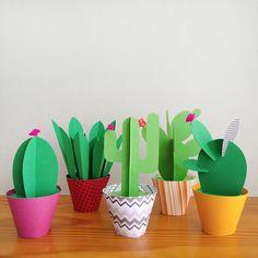 Coleção 5 Paper Cactus