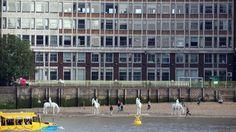 Thames underwater horses