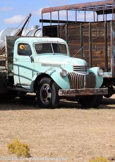 Photograph - Antique Chevrolet Truck by Troy Montemayor , Farm Trucks, New Trucks, Cool Trucks, Pickup Trucks, Classic Chevrolet, Classic Chevy Trucks, Troy, Old Chevy Pickups, Chevy Van
