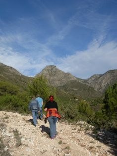 A wonderful area for nature lovers & hikers! http://www.andalusie-zeezicht.nl/andalusie/la-axarquia