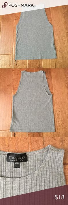 Topshop Tank Top Topshop High neck, cropped ribbed tank top. Fits tightly against body & fits like a small. Thin, lightweight material. Great for layering under a flannel! Topshop Tops Crop Tops