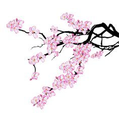 Branch of cherry tree vector 746959 - by tanais on VectorStock�