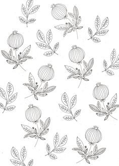 Pomegranate wallpaper. | Katt Frank.