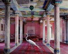 sullenmoons:  Flight to Freedom, Durbar Hall, Dungarpur, from the India Song series - Karen Knorr, 2010