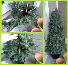 Tomato cage Ch. trees for the front porch or patio. Tomato cage, garland (twist two of the cheaper ones together & add your old lights that I know you still have lying around...put bow on top add bows or ornaments if you can secure them well. This will be about half of what ready-made trees will cost...or maybe even 1/3 or 1/4!