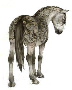 #horse #gray #watercolor #dapple #traditionalart