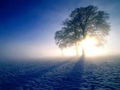 PRANOSTIKA NA STREDU 16. NOVEMBRA: Studený november - zelený január