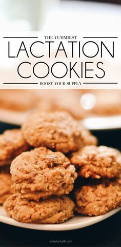 a yummy oatmeal chocolate chip lactation cookie recipe for nursing moms who need to boost their supply