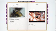 Komputerowe narzędzia Rum, Ipad, Polaroid Film, Web 2, Education, Teaching, Onderwijs, Room, Rome
