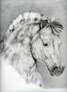 Horse Rai by Adniv on DeviantArt