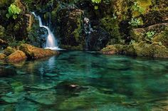 Opal Creek - found on my friend, Anna's board. I must go here and meditate awhile