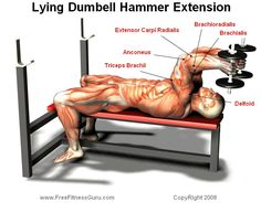 dumbell tricep extension