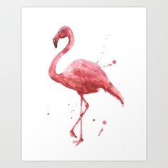 #flamingo #pink #art #painting #illustration #bird watercolour #watercolour