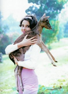 """Audrey Hepburn and pet deer Pippin.  He lived with her in her home.  The fawn was given to her after the movie """"Green Mansions""""."""