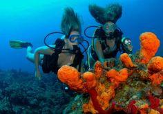 Grenadines Advanced Scuba Voyage