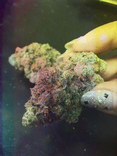 tommythc:    marijuana
