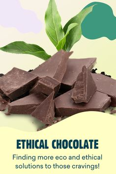 Choccie cravings got you down? Yoppie's guide to eco-friendly and ethical chocolate explains how to indulge those urges in a much more planet-friendly way. Free Blog, Cravings, Eco Friendly, Chocolate, Chocolates, Brown
