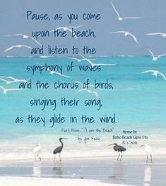 Pause as you come upon the beach, and listen to the symphony of waves and the chorus of birds, singing their song, as they glide in the wind. Ocean Quotes, Beach Quotes, Sea Qoutes, Summer Quotes, Ko Samui, Ocean Beach, Beach Bum, Summer Beach, Beach Memes