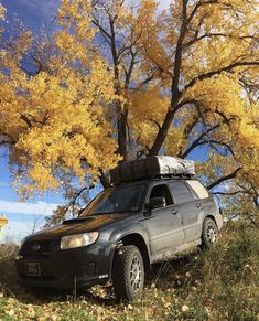 Subaru Forester, Aston Martin, Cars And Motorcycles, Camper, Wheels, Heaven, Awesome, Fun, Ideas