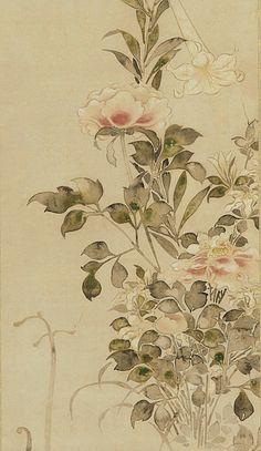 Peonies and Lilies (detail) ~ by Tawaraya Sotatsu