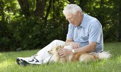 Dog Helps Alzheimer's Patient Regain Speech (video)