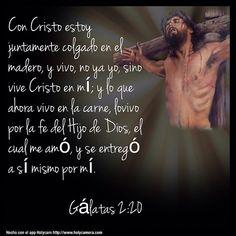 Con Cristo estoy juntamente colgado en el madero, y vivo, no ya yo, sino vive Cristo en mí; y lo que ahora vivo en la carne, lovivo por la fe del Hijo de Dios, el cual me amó, y se entregó a sí mismo for mí. Gálatas 2:20 #holycam