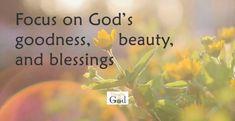 God's Beauty All Around Us | A Devotional by Bradley Stubbs