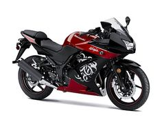 2010 Kawasaki Ninja 250R Sport Bike - like the paint job