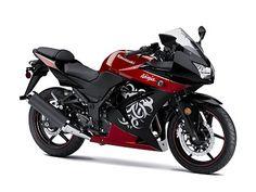 2010 Kawasaki Ninja 250R Sport Bike - like the paint job