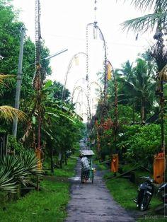 A side street in Bali  #village #street #bali