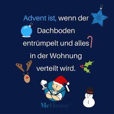 In der zweiten Adventwoche wird es langsam wieder Zeit den Dachboden zu entrümpeln! Nur der Weihnachtsbaumschmuck darf noch etwas warten 🎄 oder wie siehst du das?  #Weihnachten #advent #weihnachtsdeko #dekoration #dekojunkie #diy #weihanchtstimmung #festlich #weihnachtlich #xmas #adventszeit #dachboden #entrümpeln #messi #chaos #aufräumen #dekorieren #wohnung #wohnen #wohnlich #zuHause #dekoprofi #merrychristmas #mchousy #putzen #alltag #haushalt #haushaltshilfe