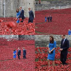 """The Duke and Duchess of Cambridge and Prince Harry wander through the field of over 880,000 ceramic poppies """"planted"""" for an installation at the Tower of London to mark the fallen British soldiers from WW1 that started 100 years ago - on August 5, 1914."""