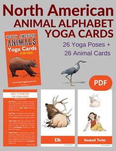 Learn the alphabet by acting out the A-Z of North American animals through yoga poses for kids. Download these digital yoga cards, print, and play! | Kids Yoga Stories