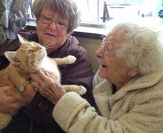 97 year old fur mom adopting cheddar in the wake of superstorm sandy...lambertville, nj
