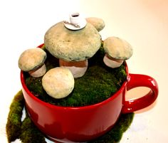 Coffee with a fairy anyone? Mushrooms available at Morelandcreations.com.