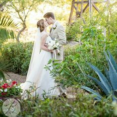 Repost: Gorgeous wedding at the #windmillwinery! #azweddings #bethaneyphotography