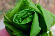 Rose from fresh acer leaves :-)