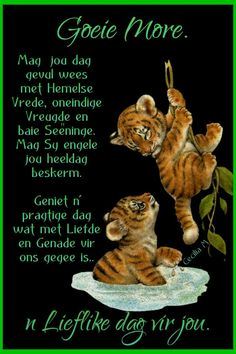 Day Wishes, Good Morning Wishes, Good Morning Quotes, Evening Greetings, Afrikaanse Quotes, Goeie Nag, Goeie More, Happy Birthday Quotes, Funny Quotes