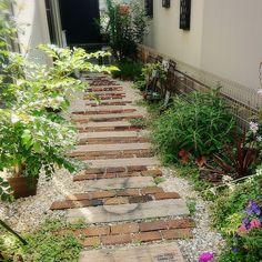 Wardrobe Room, Wardrobe Design Bedroom, Brick Garden, Garden Paths, Green Flowers, Decoration, Stepping Stones, Entrance, Backyard