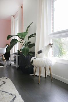 DIY Room Decor Ideas in Black and White – Furry Stool – Creative Home Decor and Room Accessories – Cheap and Easy Projects and Crafts for Wall Art, Bedding, Pillows, Rugs and Lighting – Fun. Easy Home Decor, Cheap Home Decor, Diy Room Decor, Diy Stool, Diy Casa, Black Decor, White Decor, Creative Home, My New Room