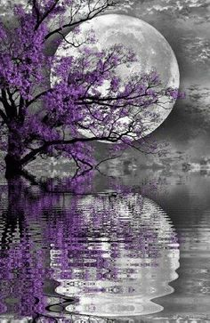 moon through purple reflection
