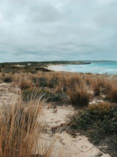 See more of claudbakes's content on VSCO. Road Trip France, Beautiful World, Beautiful Places, In Natura, Beach Aesthetic, Destinations, Wanderlust, Vsco, Foto Art