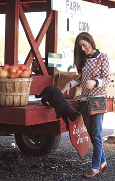 Sweater by Gant, oxford by J.Crew, jeans by Goldsign, shoes by Cole Haan, bag by Dooney & Bourke. Sarah Vickers, Preppy Fall, Classy Girl, Classy Casual, Pumpkin Head, Prep Style, New England Style, Autumn Inspiration, Style Inspiration