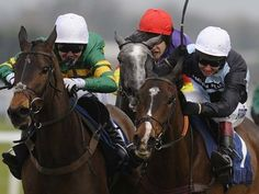 Grand National 2015 horses: full list of runners and odds Grand National 2015 Horse Racing Bet, Live Racing, Sports Picks, Racing News, Grand National, Animal Crackers, Equestrian, Riding Helmets, Creatures