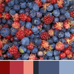 paleta de cores | Cores Lovers
