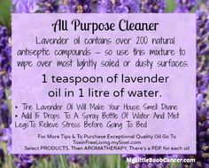 Essential Oil Cleaning Recipes .