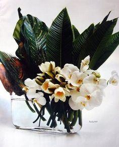 crosspollination: designer: saskia havekes of grandiflora
